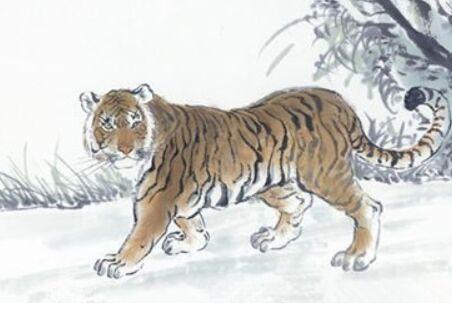 1986年屬虎人2021年運勢男女,1986年出生屬虎的今年多大了36歲_生肖