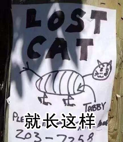 看完铲屎官设计的寻猫启事,猫走得更远了…