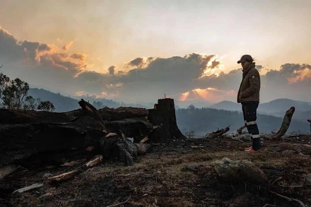"""澳洲大火4个月后,摄影师拍下28张""""奇迹"""",给人们带来了希望"""