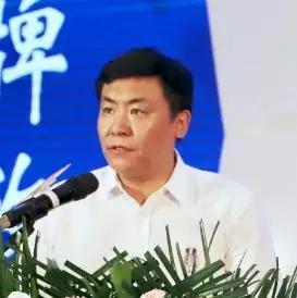陕西省西安市西咸新区明珠国际集团 中国原点国际灯都城总经理仇辛培