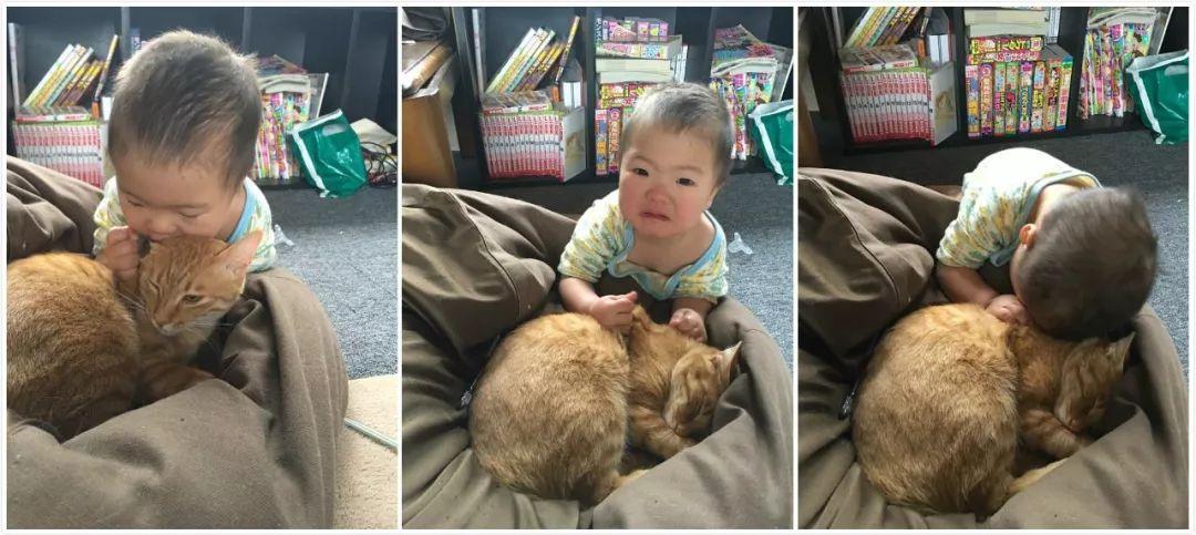 """""""和猫一起长大的孩子,都特、别、熊!"""""""