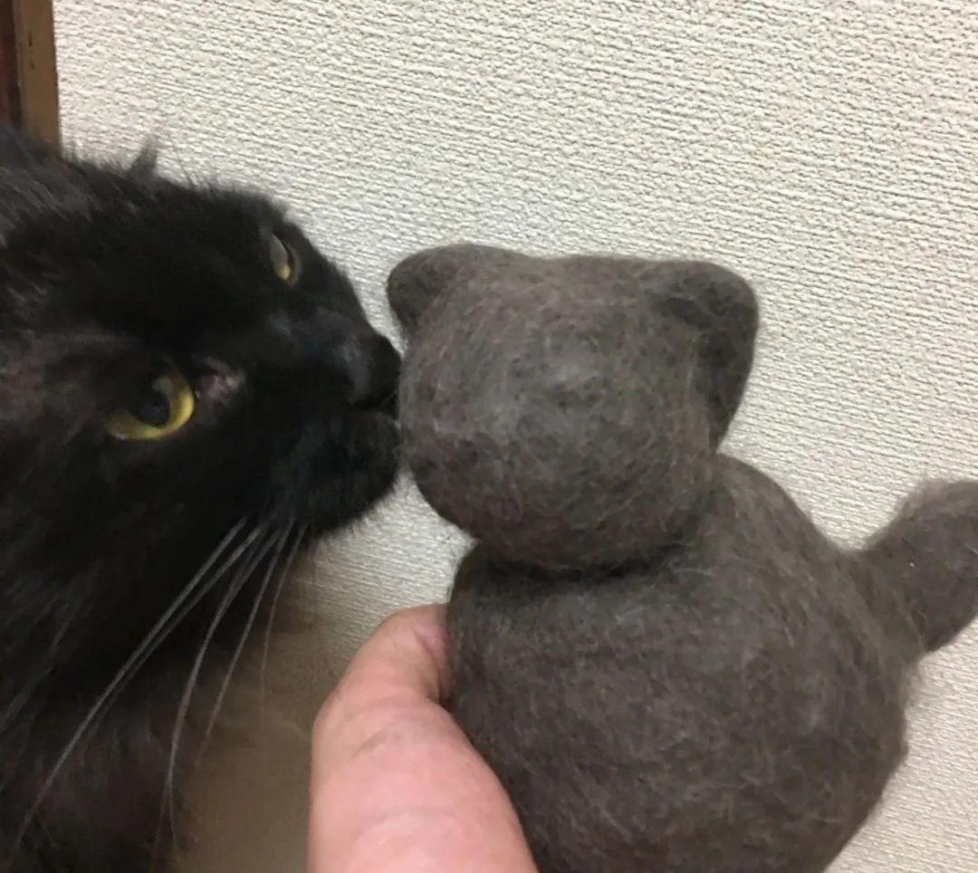 猫猫过生日,铲屎官亲手做了一份特殊的礼物送给它