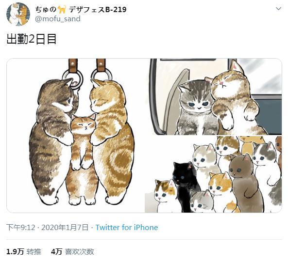 """日推爆火的4W赞""""猫片"""""""