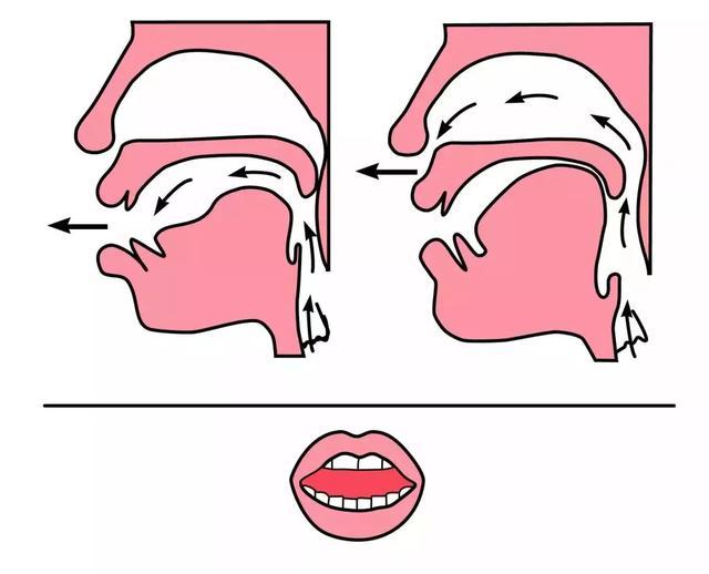 平舌音和翘舌音有哪些区别?都包含了哪些字  第4张