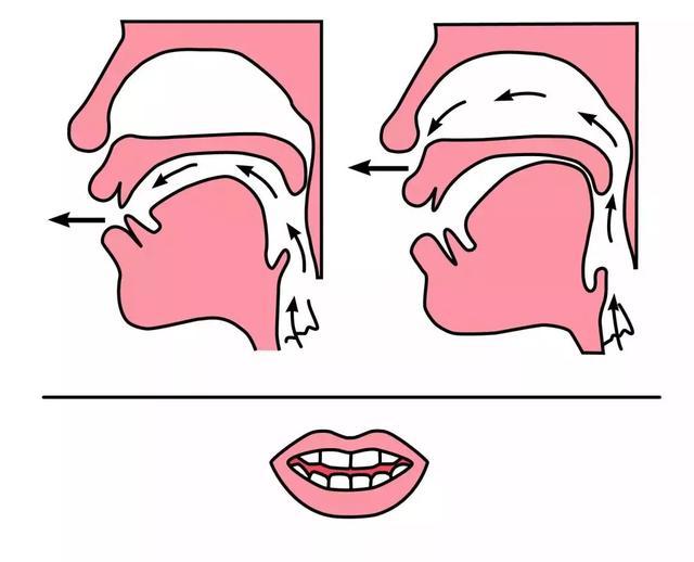 平舌音和翘舌音有哪些区别?都包含了哪些字  第6张