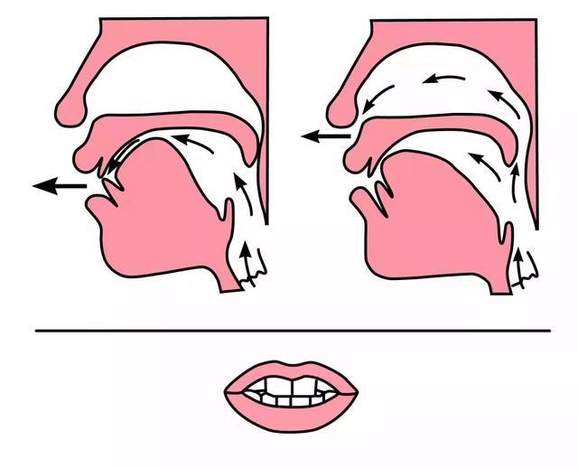 平舌音和翘舌音有哪些区别?都包含了哪些字  第7张