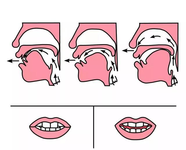 平舌音和翘舌音有哪些区别?都包含了哪些字  第8张