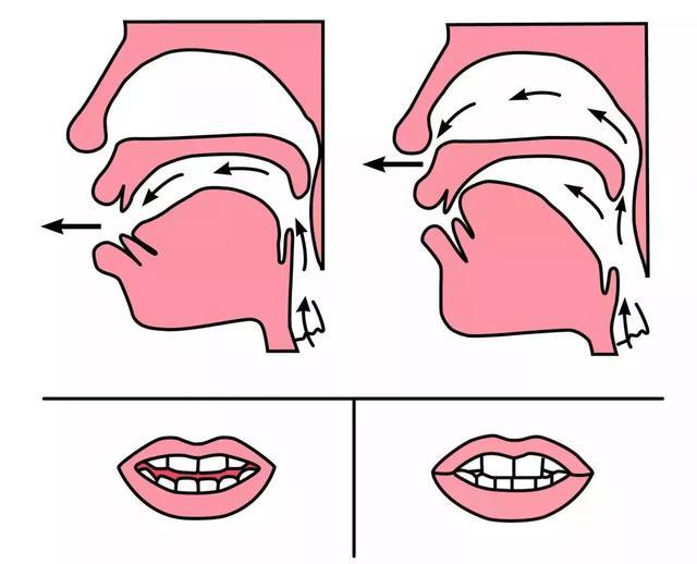 平舌音和翘舌音有哪些区别?都包含了哪些字  第5张