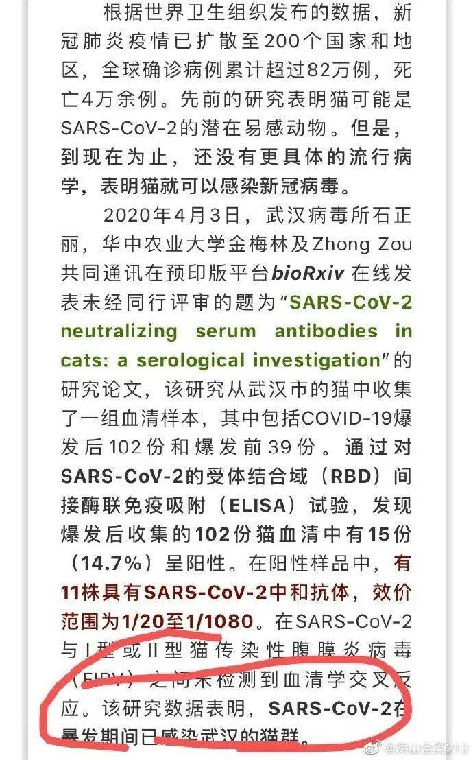 """研究团队亲自辟谣:""""14.7%的猫感染新冠病毒""""是误导!"""