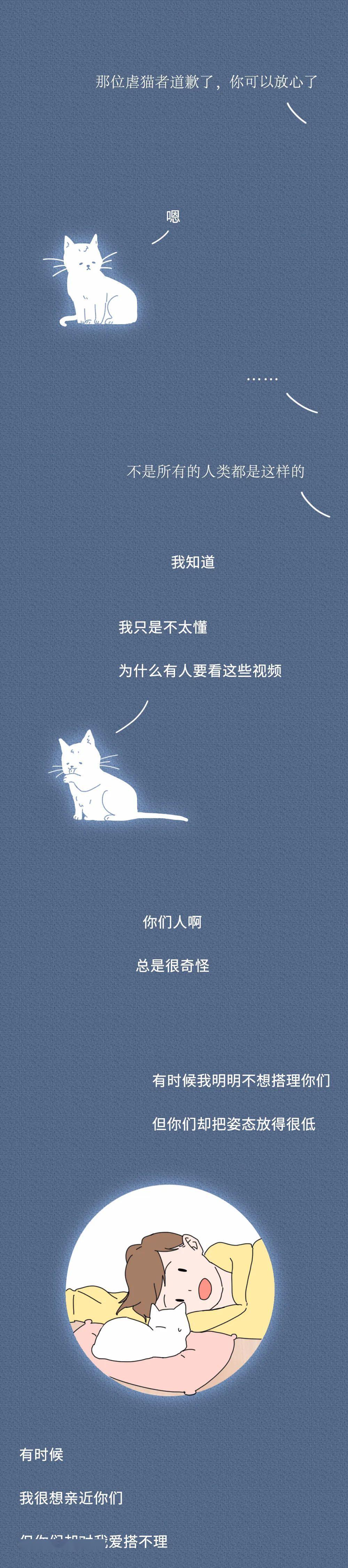 """""""虐待我们会有快感吗?""""一只猫的自述刷爆朋友圈,看完泪崩…"""