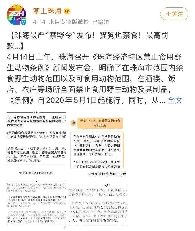 继深圳之后,珠海也正式立法禁食猫狗!