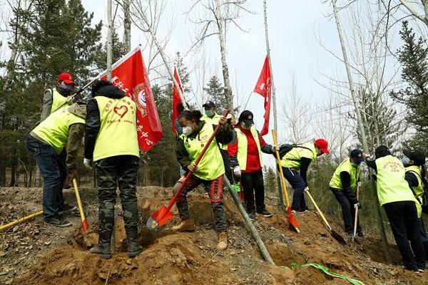 青海善行天下志愿者参加大型公益植树活动
