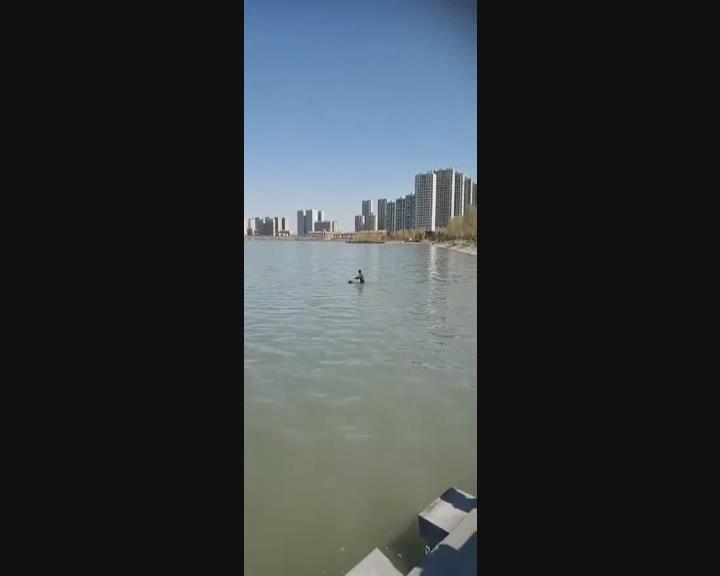 66岁保安虽然不会水但却勇敢下湖中救人