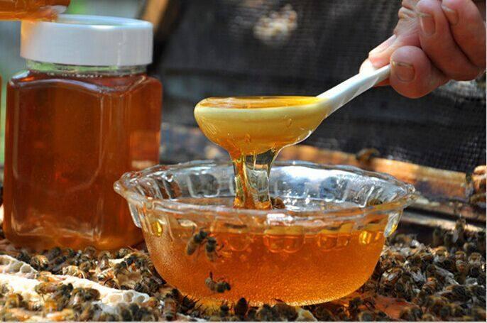 墨恋洗发水为你解密蜂蜜的真正作用