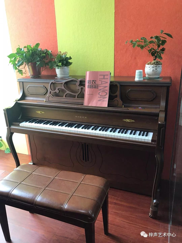 电子琴和电钢琴的区别?初学买钢琴还是电钢琴?