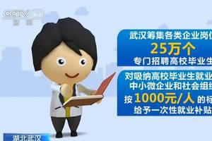 武汉筹集各类企业岗位25万个 迎接高校毕业生就业
