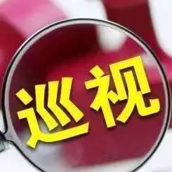 严查!宁海6名县管领导干部伪造人事档案、虚构