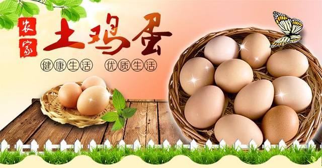 昌吉土鸡蛋