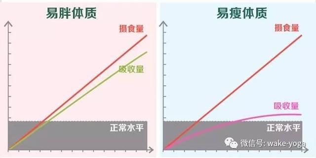每天按摩这5个部位,躺在床上也能轻松减肥插图
