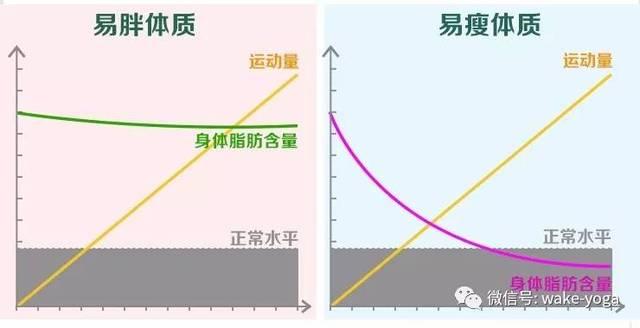 每天按摩这5个部位,躺在床上也能轻松减肥插图1