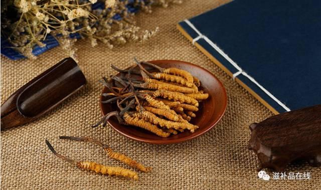 冬虫夏草名贵的理由,中西医是怎样评价冬虫夏草的