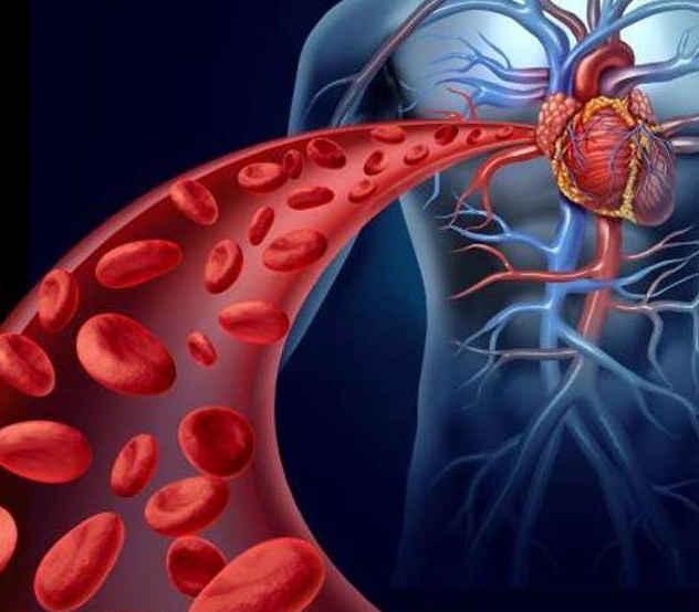 干细胞可以从根本上解决心脑血管疾病!