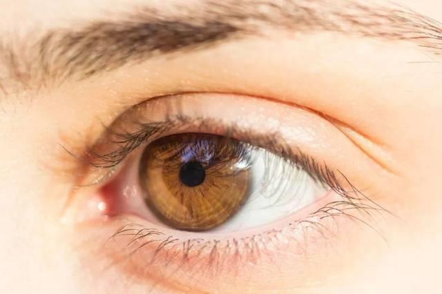 左眼跳财,右眼跳灾真的靠谱吗?眼皮跳究竟是什么原因造成?
