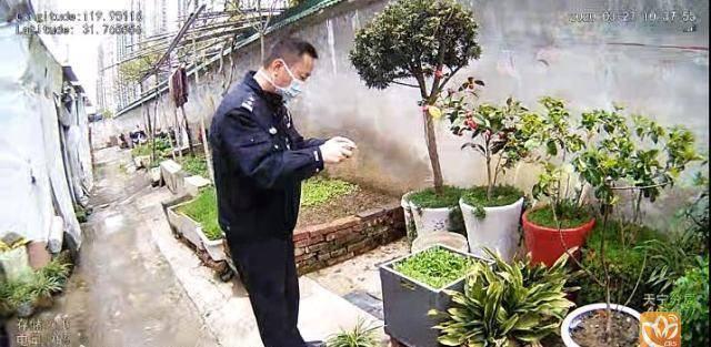 用两个罂粟壳种出近2000株罂粟花 天宁区一老汉被查处