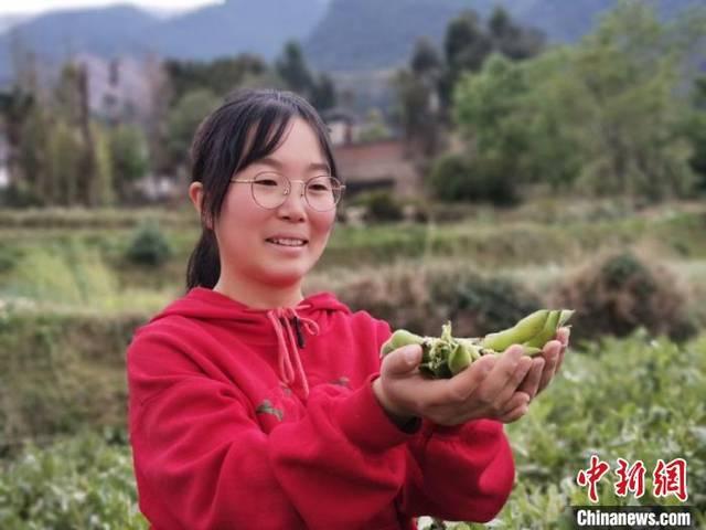 """云南大理""""90后""""女孩直播卖农产品 年销售额超"""