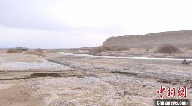甘肃敦煌建疏勒河道绿色屏障 保护生态安全