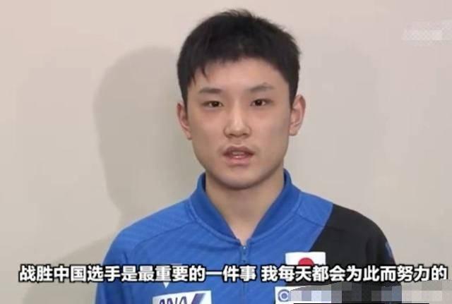 张本智和遭遇重大打击!被取消来中国特训 日媒