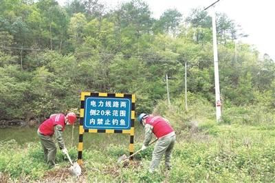 <strong>国网荆门供电公司:防范山火保安全</strong>