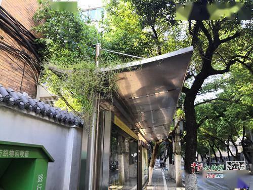 南昌公交运输集团:对确定不会再使用的站台将