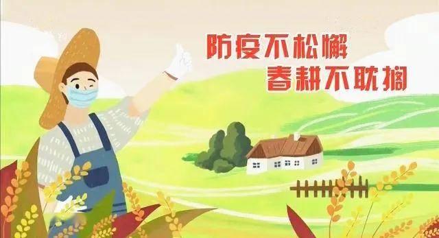 """渠县:双线作战 力促防""""疫""""战""""贫""""两不误"""