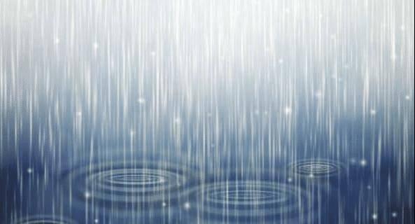 各国领袖突遇大雨:普京值得敬佩,金正恩最随