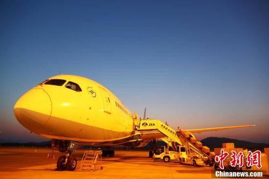 江西开通防疫物资国际货包机:南昌至阿姆斯特