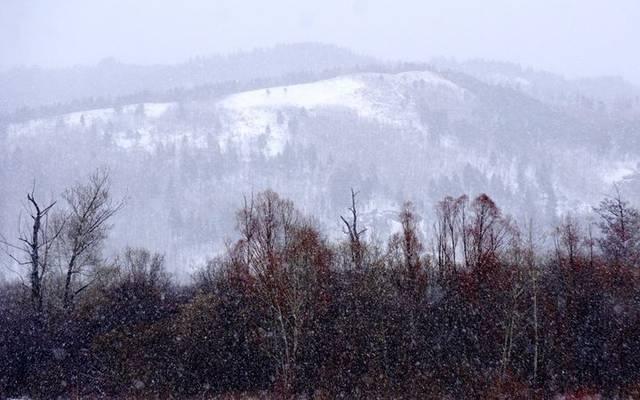 谷雨节气 黑龙江漠河迎来大雪