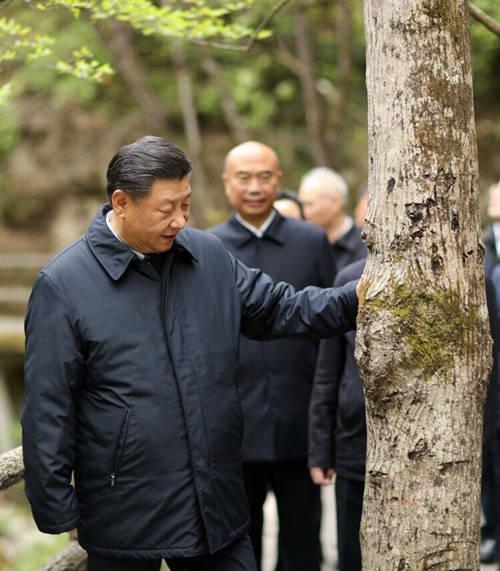 """曾六次批示指示 习近平陕西考察首站关注这个"""""""