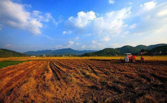 最新农村征地流程前瞻:十大步骤,对被征地农