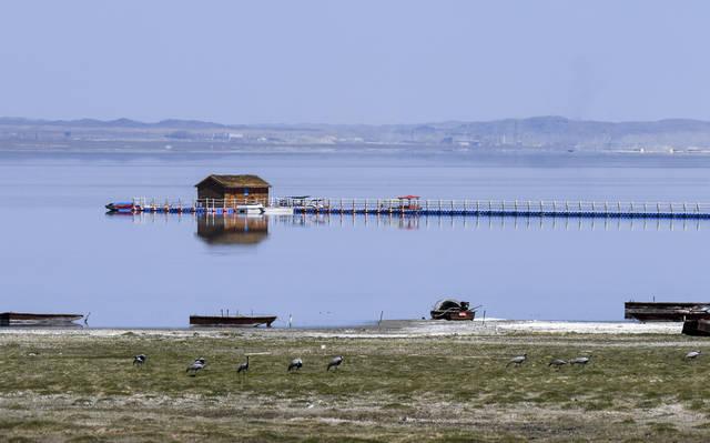 新疆:巴里坤湖春日美
