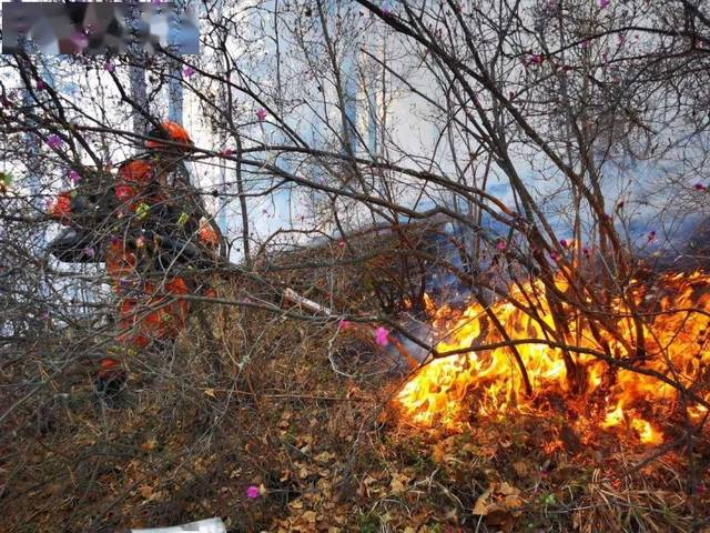 内蒙古大兴安岭林区发生两起雷电火灾