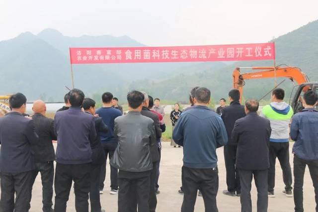 助推脱贫攻坚,助力乡村振兴, 全省最大平菇产业基地落户栾川!